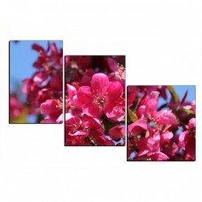 Картина на холсте по фото Модульные картины Печать портретов на холсте Цветущее дерево