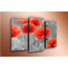 Картина на холсте по фото Модульные картины Печать портретов на холсте Модульная картина на  метале - m-000559