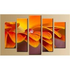 Картина на холсте по фото Модульные картины Печать портретов на холсте Модульная картина на  метале - 5m-296