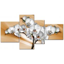 Фото на холсте Печать картин Репродукции и портреты - Цветная орхидея
