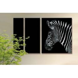 Одинокая зебра - Модульная картины, Репродукции, Декоративные панно, Декор стен