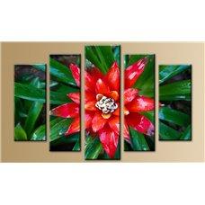 Картина на холсте по фото Модульные картины Печать портретов на холсте Модульная картина на дереве - 5m-001