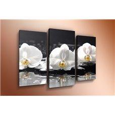 Картина на холсте по фото Модульные картины Печать портретов на холсте Модульная картина на дереве - m-000575