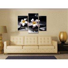 Картина на холсте по фото Модульные картины Печать портретов на холсте Лилии и камни