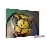 Портреты картины репродукции на заказ - В мире насекомых