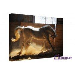 Белая грация - Модульная картины, Репродукции, Декоративные панно, Декор стен
