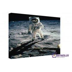 Человек на Луне - Модульная картины, Репродукции, Декоративные панно, Декор стен