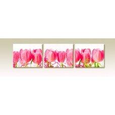 Картина на холсте по фото Модульные картины Печать портретов на холсте Тюльпаны