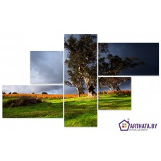 Картина на холсте по фото Модульные картины Печать портретов на холсте Перед грозой