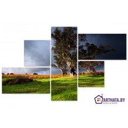 Фото на холсте Печать картин Репродукции и портреты - Перед грозой