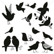Картина на холсте по фото Модульные картины Печать портретов на холсте Трафарет Набор певчих птичек