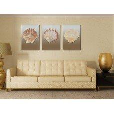 Картина на холсте по фото Модульные картины Печать портретов на холсте Ракушки