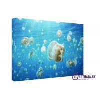 Портреты картины репродукции на заказ - Медузы в океане
