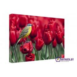 Поле тюльпанов - Модульная картины, Репродукции, Декоративные панно, Декор стен