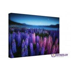 Картина на холсте по фото Модульные картины Печать портретов на холсте Ночные цветы