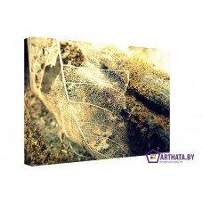 Картина на холсте по фото Модульные картины Печать портретов на холсте После зимы