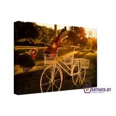 Картина на холсте по фото Модульные картины Печать портретов на холсте Музыкальный велосипед