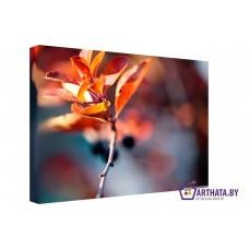 Картина на холсте по фото Модульные картины Печать портретов на холсте Осеннее дерево