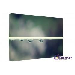 Капли дождя - Модульная картины, Репродукции, Декоративные панно, Декор стен