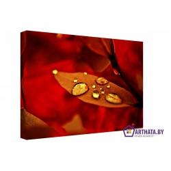 Красные листья - Модульная картины, Репродукции, Декоративные панно, Декор стен