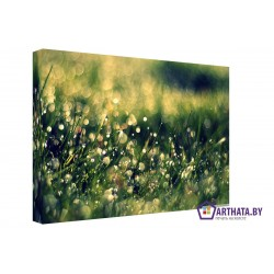 Луговые травы - Модульная картины, Репродукции, Декоративные панно, Декор стен