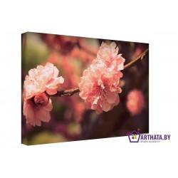 Алые цветы - Модульная картины, Репродукции, Декоративные панно, Декор стен