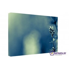 Картина на холсте по фото Модульные картины Печать портретов на холсте Начало жизни