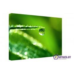 Зеленые листья - Модульная картины, Репродукции, Декоративные панно, Декор стен