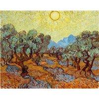 Оливы под желтым небом и солнцем