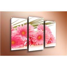 Картина на холсте по фото Модульные картины Печать портретов на холсте Модульная картина на стекле - m-000116