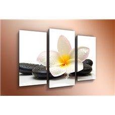 Картина на холсте по фото Модульные картины Печать портретов на холсте Модульная картина на стекле - m-000120