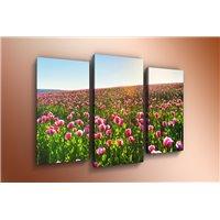 Модульная картина на стекле - m-000134