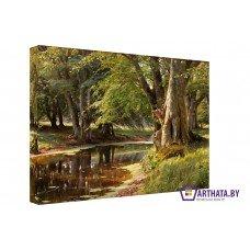 Картина на холсте по фото Модульные картины Печать портретов на холсте Лесная река