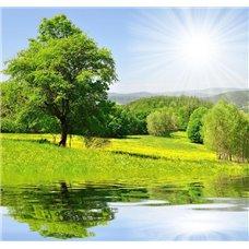 Картина на холсте по фото Модульные картины Печать портретов на холсте Солнечный день - Фотообои природа|озера