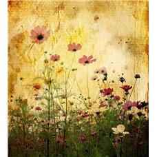 Картина на холсте по фото Модульные картины Печать портретов на холсте Полевые цветы - Фотообои цветы полевые