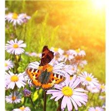 Картина на холсте по фото Модульные картины Печать портретов на холсте Бабочки на цветке - Фотообои природа|бабочки