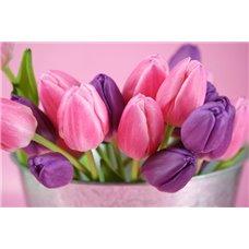 Картина на холсте по фото Модульные картины Печать портретов на холсте Тюльпаны в горшке - Фотообои цветы тюльпаны