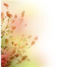Картина на холсте по фото Модульные картины Печать портретов на холсте Цветущие веточки - Фотообои цветы цветущие деревья