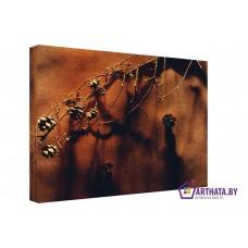 Картина на холсте по фото Модульные картины Печать портретов на холсте Сосновые шишки