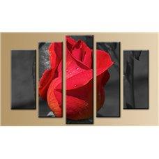 Картина на холсте по фото Модульные картины Печать портретов на холсте Модульная картина на холсте - m-001221