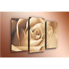 Картина на холсте по фото Модульные картины Печать портретов на холсте Модульная картина на холсте - m-000226