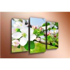 Картина на холсте по фото Модульные картины Печать портретов на холсте Модульная картина на холсте - m-000235