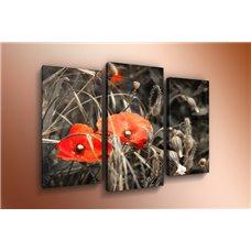 Картина на холсте по фото Модульные картины Печать портретов на холсте Модульная картина на холсте - m-000289