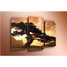 Картина на холсте по фото Модульные картины Печать портретов на холсте Модульная картина на холсте - m-000354