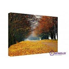 Картина на холсте по фото Модульные картины Печать портретов на холсте Желтый ковер