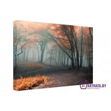 Картина на холсте по фото Модульные картины Печать портретов на холсте Волшебный туман