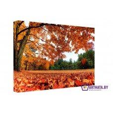 Картина на холсте по фото Модульные картины Печать портретов на холсте Падающие листья