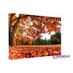 Фото на холсте Печать картин Репродукции и портреты - Падающие листья