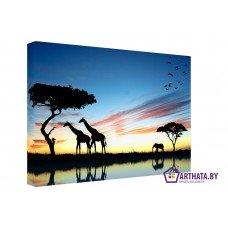 Картина на холсте по фото Модульные картины Печать портретов на холсте Жирафы