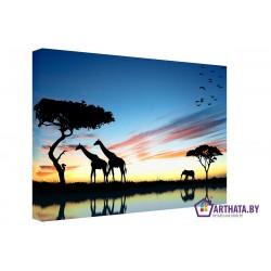 Фото на холсте Печать картин Репродукции и портреты - Жирафы